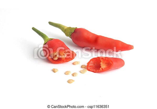Chili Bilder chili weißer hintergrund rotes zwei freigestellt