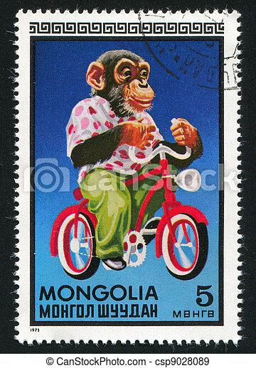 Chimpanzee on bicycle - csp9028089