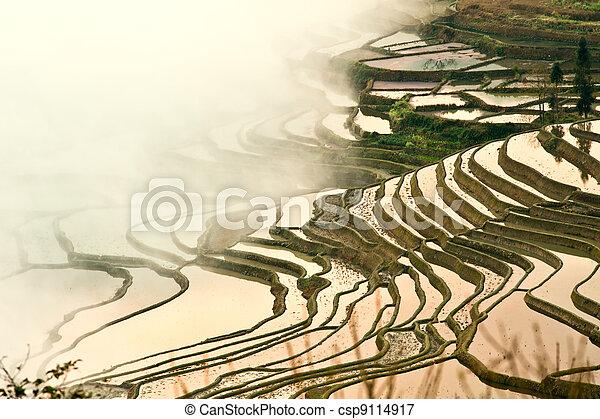 China Yunnan, Yuanyang terraced color - csp9114917