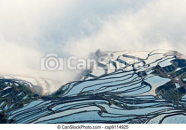 China Yunnan, Yuanyang terraced color - csp9114925