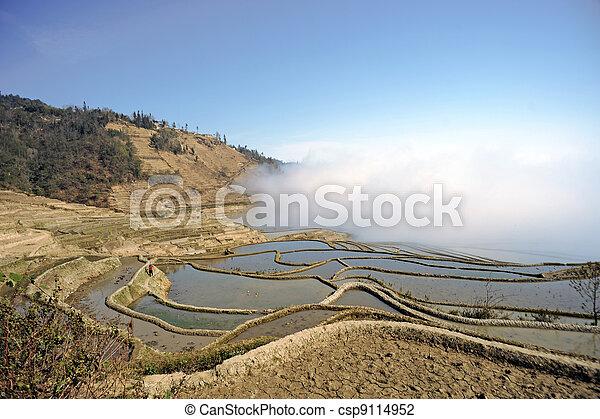 China Yunnan, Yuanyang terraced color - csp9114952