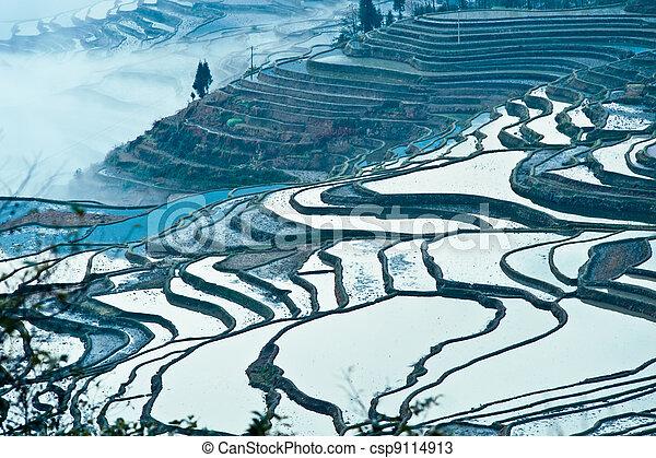 China Yunnan, Yuanyang terraced color - csp9114913