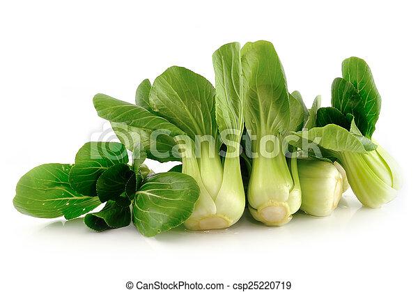 (chinese, aislado, bok, cabbage), choy, blanco - csp25220719