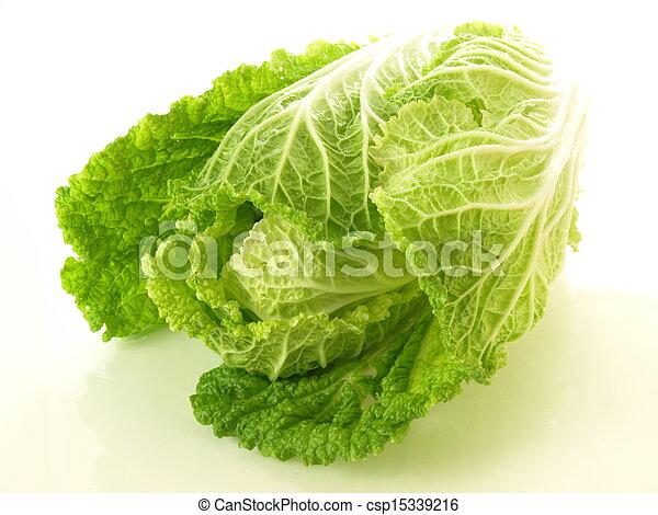 Chinese cabbage - csp15339216