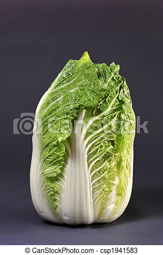 Chinese Cabbage - csp1941583