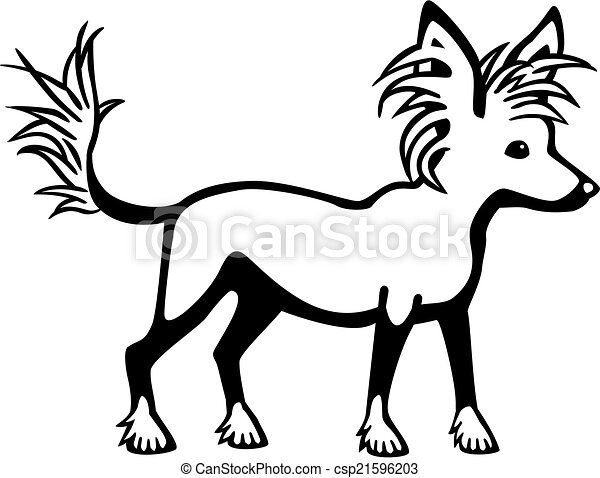 Chinese Crested Dog - csp21596203