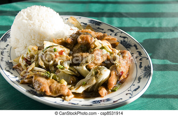 Chinese food twice cooked chicken  - csp8531914