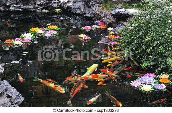 Chinese Koi pond - csp1303273