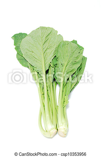 chinese lettuce on white background - csp10353956