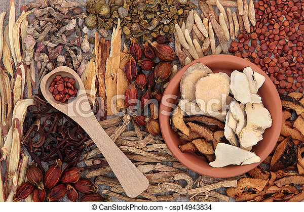 Chinese Medicinal Herbs - csp14943834