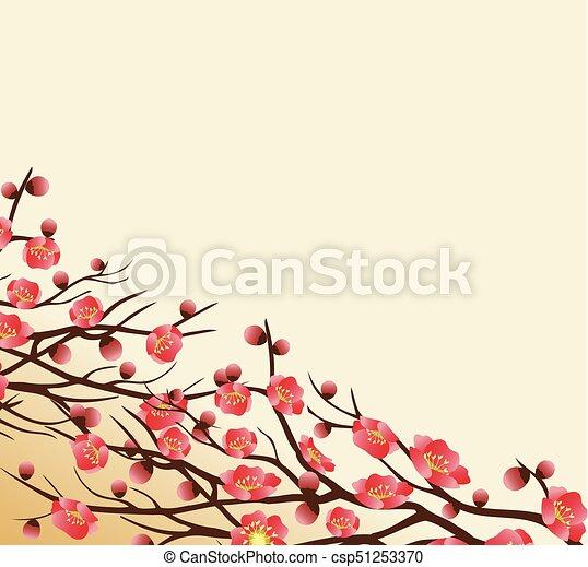 chinese new year background blooming sakura branches csp51253370