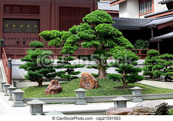 Chinese traditional garden - csp21591563