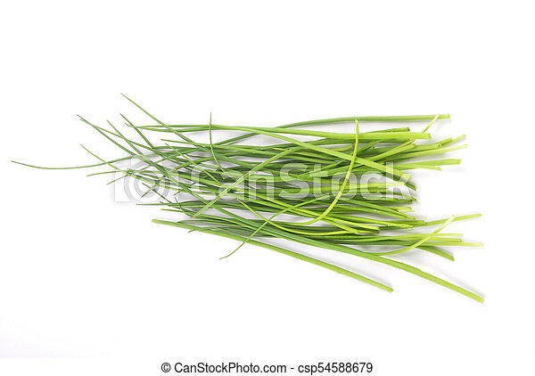 Chives on white background - csp54588679