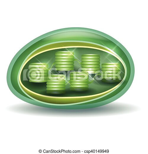 Chloroplast structure a part of the plant cell ccuart Image collections
