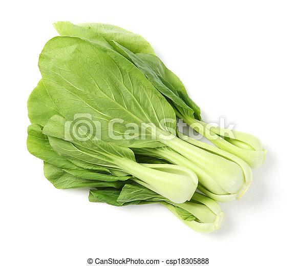 choi, pak, verde - csp18305888