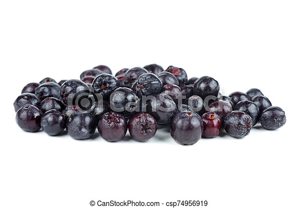 Chokeberries isolated on white background - csp74956919