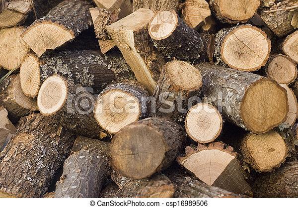 chopped firewood logs - csp16989506