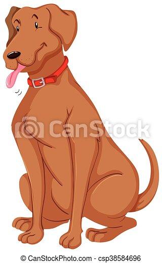 chouchou, brun, fourrure, chien - csp38584696