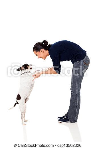 chouchou, formation, femme, chien, joli - csp13502326