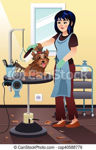 Chouchou groomer salon toilettage chien salon for Salon toilettage chien
