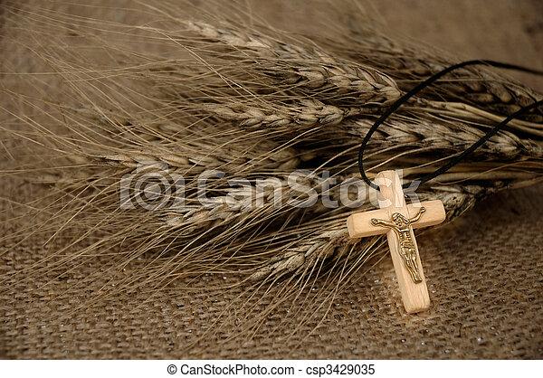 Christian Cross And Wheat - csp3429035