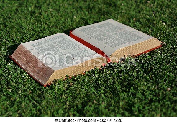 christianity, open christian bible or gospel - csp7017226
