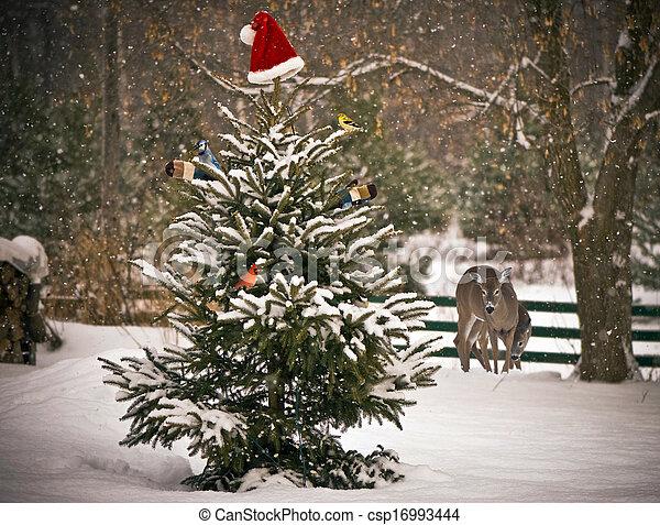 Christmas animals. - csp16993444