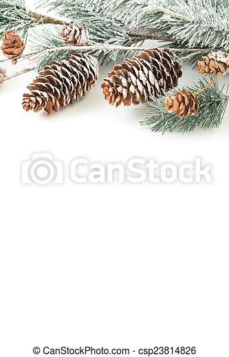Christmas background - csp23814826