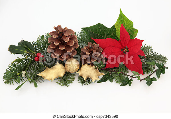 35f868ce96fd Christmas decoration. Christmas decoration of red poinsettia flower ...
