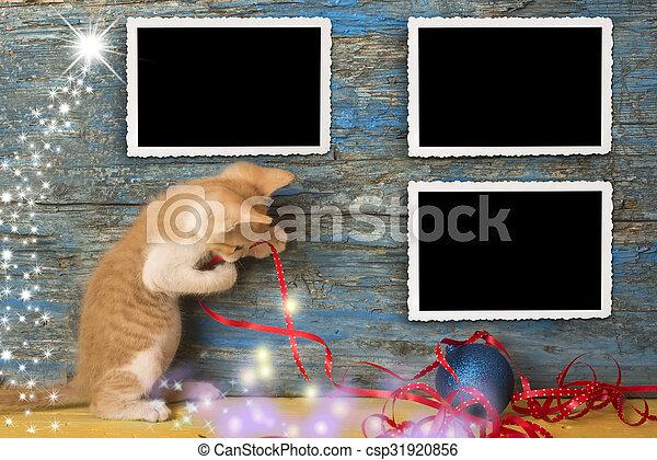 Christmas empty photo frames funny cat - csp31920856