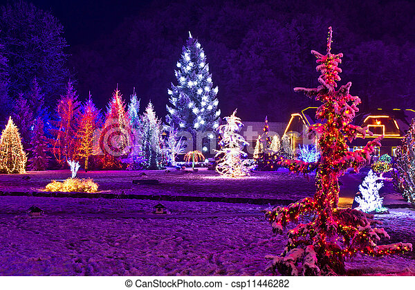 Christmas fantasy - park & forest in xmas lights - csp11446282
