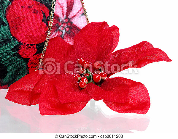 Christmas Flower - csp0011203