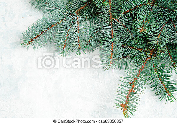Christmas frame made of branches of a New Year tree. Christmas wallpaper.  Flat lay, top view, copy space