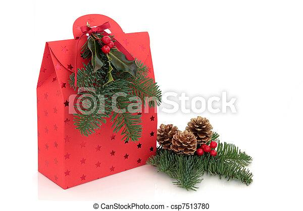 Christmas Gift Bag - csp7513780