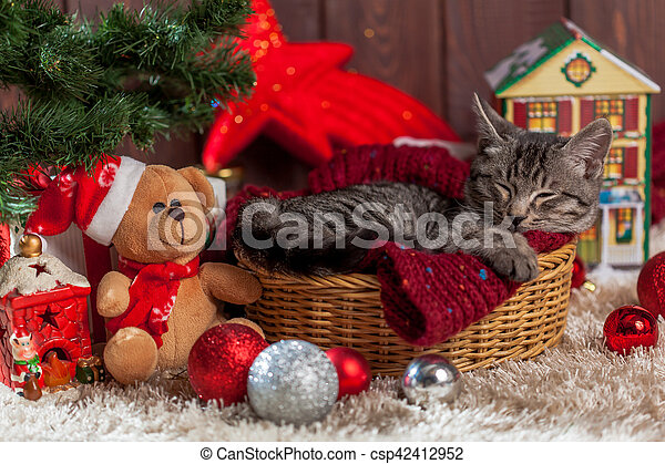 Christmas gifts and kitten under the tree. Christmas gifts ...