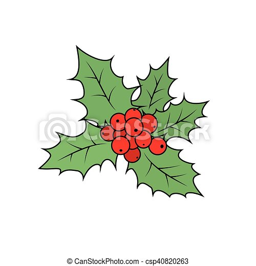 christmas holly berry isolated on white csp40820263 - Christmas Holly Decorations