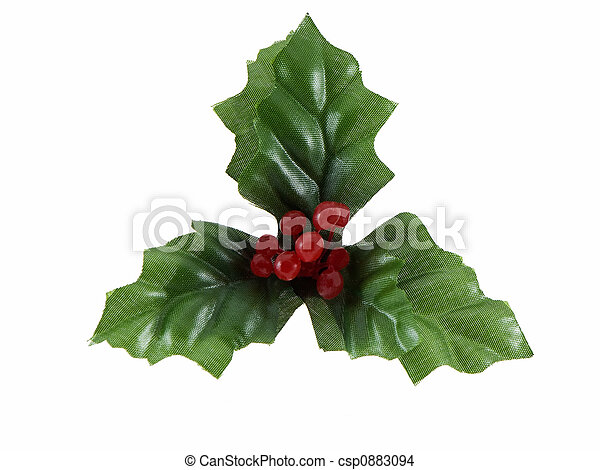 Christmas Holly - csp0883094