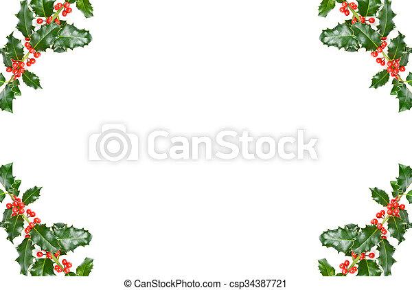 Christmas Holly - csp34387721