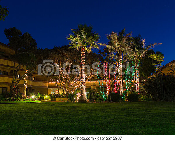 christmas lights on palm trees csp12215987