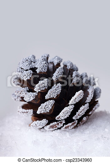 Christmas pine cone in the snow - csp23343960