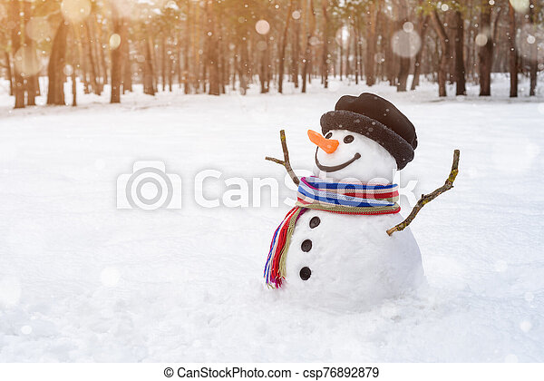 Christmas scene with a cheerful snowman in the park - csp76892879