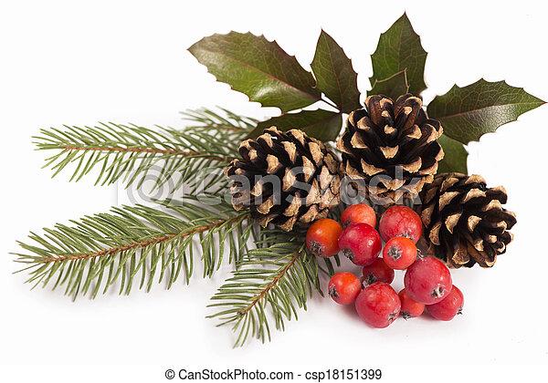 Christmas seasonal border of holly, mistletoe, sprigs with pine cones - csp18151399