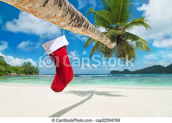 Christmas sock on palm tree at exotic tropical beach - csp22304769
