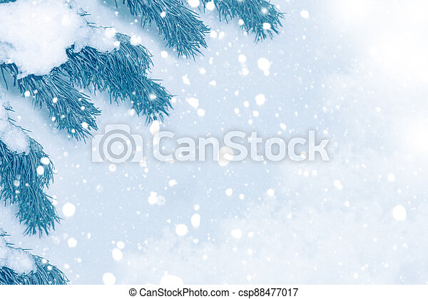 Christmas tree in the snow - csp88477017