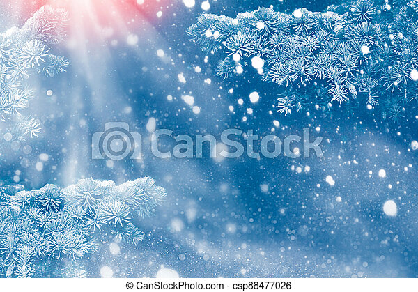 Christmas tree in the snow - csp88477026