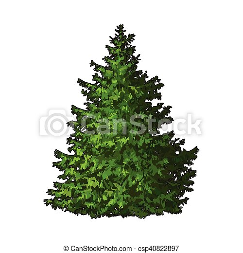 Christmas Tree Illustration.Christmas Tree Isolated
