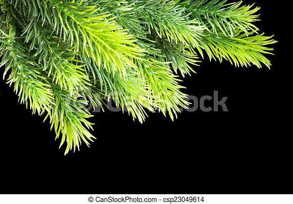 Christmas tree isolated on the black background - csp23049614