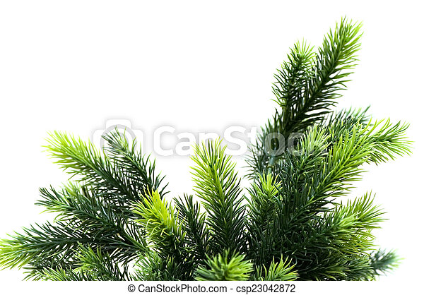 Christmas tree isolated on the white background - csp23042872