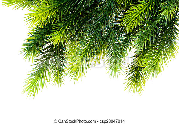 Christmas tree isolated on the white background - csp23047014