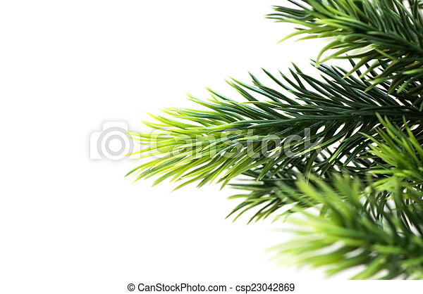 Christmas tree isolated on the white background - csp23042869